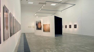 Contemporary art exhibition, Group Exhibition, Check Up at ShanghART, Beijing, China