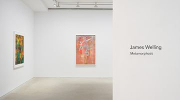 Contemporary art exhibition, James Welling, Metamorphosis at David Zwirner, Hong Kong