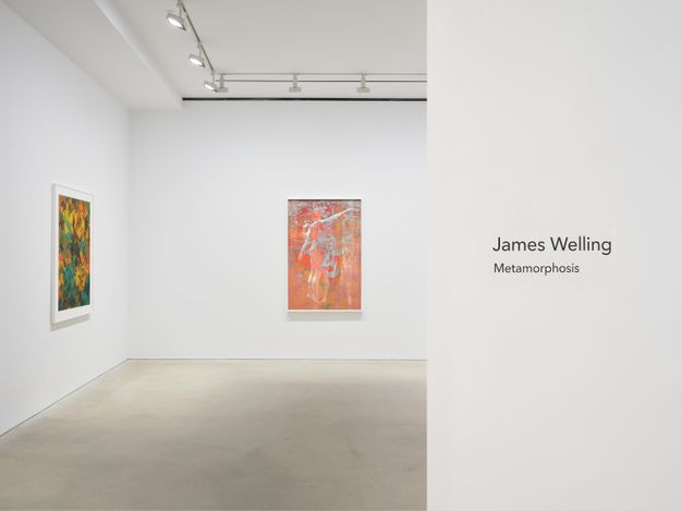 Exhibition view: James Welling, Metamorphosis, David Zwirner, Hong Kong (1 April–8 May 2021). Courtesy David Zwirner.