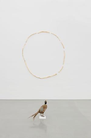 Sección aurea by Gabriel Rico contemporary artwork