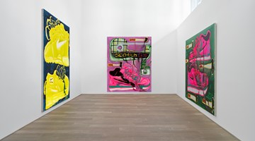 Contemporary art exhibition, Katherine Bernhardt, Garfield on Scotch Tape at Xavier Hufkens, Rivoli, Belgium