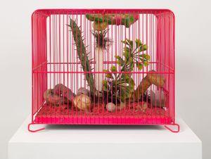 Cultivation by Tetsumi Kudo contemporary artwork