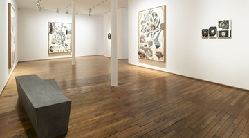 Contemporary art exhibition, Jitish Kallat, Phase Transition at Templon, 28 Grenier Saint-Lazare, Paris