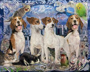 Lights of animals, animals are lights by Koichi Enomoto contemporary artwork