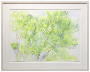 The Pin Oak 6/9/13 by Sylvia Plimack Mangold contemporary artwork