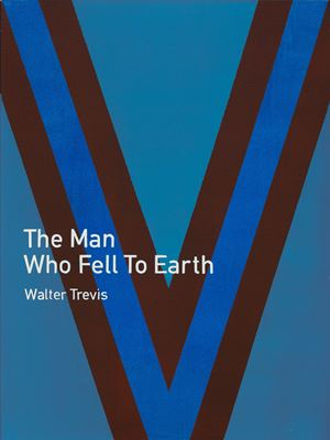 The Man Who Fell to Earth / Walter Trevis by Heman Chong contemporary artwork