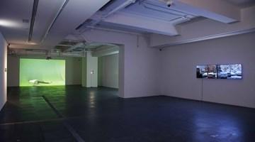 Contemporary art exhibition, Xin Yunpeng, Solo Exhibition at de Sarthe, Hong Kong