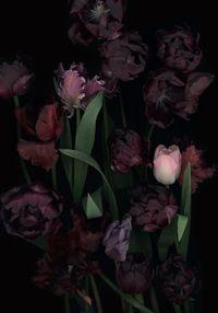Stockage 111 by Luzia Simons contemporary artwork photography