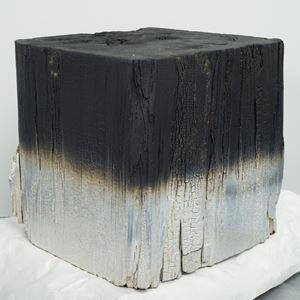 Silver Redwood 20.1 by Miya Ando contemporary artwork