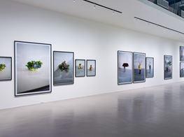 "Erwin Wurm<br><em>One Minute in Taipei: Erwin Wurm Solo Exhibition</em><br><span class=""oc-gallery"">Taipei Fine Arts Museum</span>"