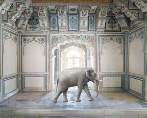 Ganesha's Stride, Abha Mahal, Ahichhatragarh, Nagaur by Karen Knorr contemporary artwork