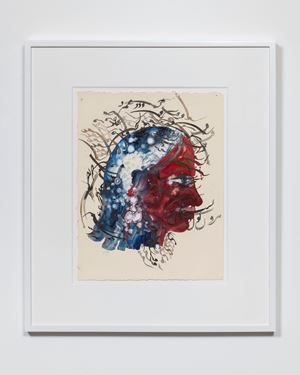 Adrienne Rich: Cartographies of Silence by Shahzia Sikander contemporary artwork