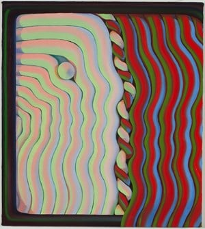 Rolling Shutter  by Sascha Braunig contemporary artwork