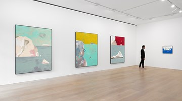 Contemporary art exhibition, Harold Ancart, Freeze at David Zwirner, London