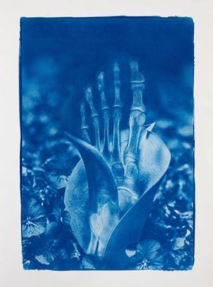 Blue Bones No.5 by Hu Weiyi contemporary artwork