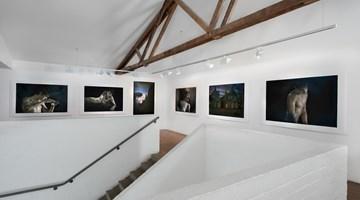 Contemporary art exhibition, Bill Henson, Bill Henson at Roslyn Oxley9 Gallery, Sydney