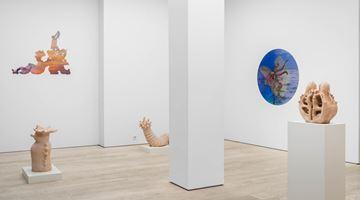 Contemporary art exhibition, Cecilia Bengolea, Liquid Guru at Andréhn-Schiptjenko, Stockholm