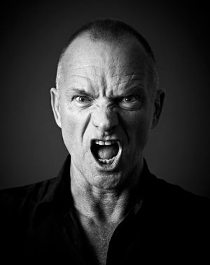 Sting by Andy Gotts contemporary artwork photography, print