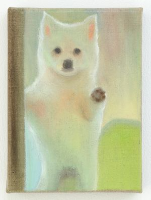 Puppy by Tao Siqi contemporary artwork