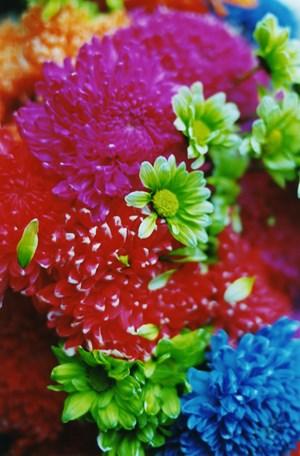 FLOWER ADDICT by Mika Ninagawa contemporary artwork