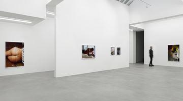 Contemporary art exhibition, Torbjørn Rødland, More Than Tongue Can Tell at Galerie Eva Presenhuber, Waldmannstrasse, Zürich, Zurich