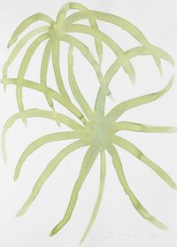 Untitled (Leaf Study 3) by William Turnbull contemporary artwork painting, works on paper