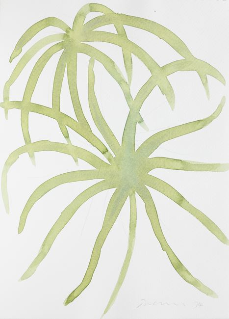 Untitled (Leaf Study 3) by William Turnbull contemporary artwork