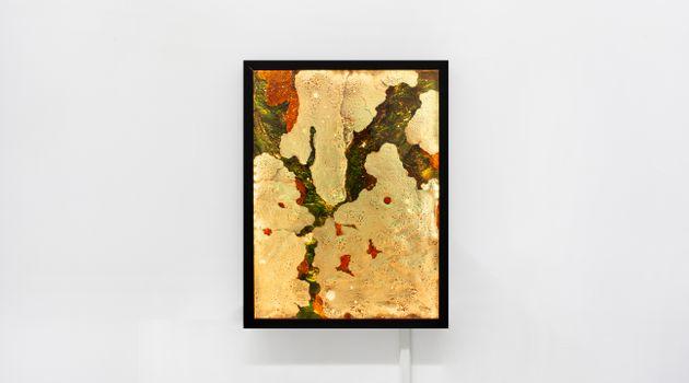 Andrew Luk contemporary artist