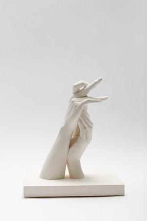 Labrador Duck by Marcus Coates contemporary artwork