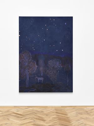 Starry night with Donkey ( August 1974) by Andrew Cranston contemporary artwork