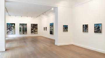 Contemporary art exhibition, Marc Desgrandchamps, Jardins obscurs at Galerie Lelong & Co. Paris, 13 Rue de Téhéran, Paris