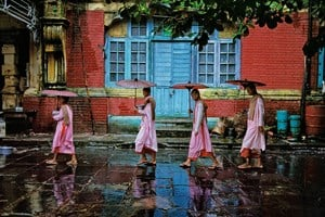 Procession of Nuns, Rangoon, Burma by Steve McCurry contemporary artwork