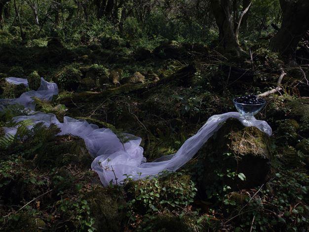 Park Youngsook, Tears of a Shadow 1, 2019, C-Print, 180 x 240 cm