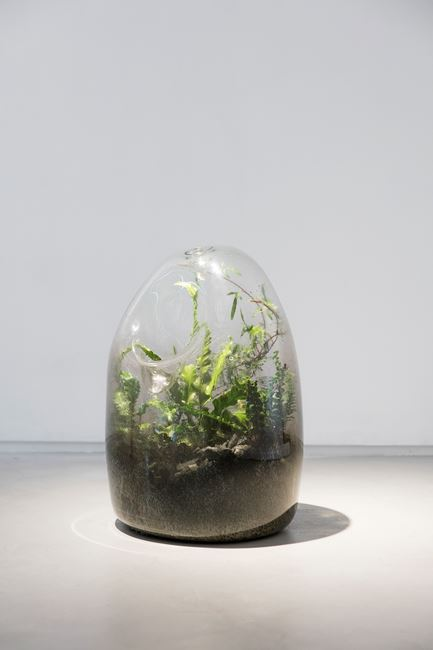 Biome No. 7 by Jamie North contemporary artwork