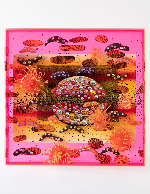 Pizza el tigre-aquarium by Lisa Vlaemminck contemporary artwork