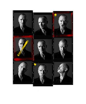 Sting Contact Sheet by Andy Gotts contemporary artwork photography, print