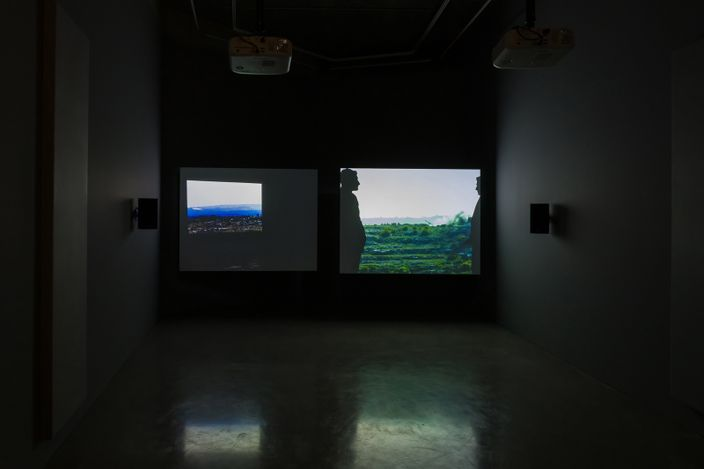 Lawrence Abu HamdanOnce Removed, HD video, colour, sound, 30 minutes, 2019installation view, Maureen Paley, London, 2020