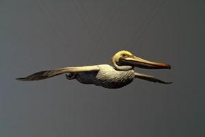 Pelican by Alex Israel contemporary artwork