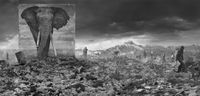 'Wasteland with Elephant',  Inherit The Dust, Kenya by Nick Brandt contemporary artwork photography, print