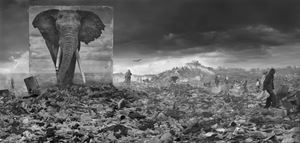 'Wasteland with Elephant',  Inherit The Dust, Kenya by Nick Brandt contemporary artwork