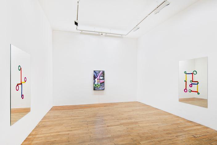 Exhibition view: Abraham Cruzvillegas, La Señora de Las Nueces, Galerie Chantal Crousel, Paris (23 January–27 February 2021). Courtesy the artist and Galerie Chantal Crousel,Paris. Photo: Martin Argyroglo.