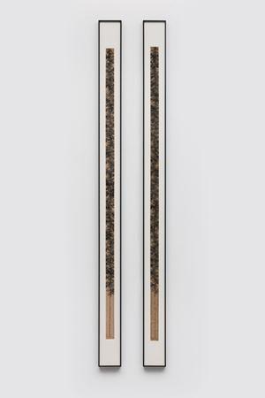 Bamboo & Coffee or Tea by Koon Wai Bong contemporary artwork