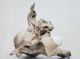 Raphael Weilguni Viola Relle