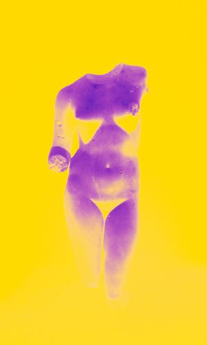Roman Woman XIV by Sara VanDerBeek contemporary artwork