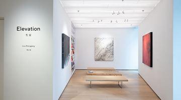 Contemporary art exhibition, Lou Zhenggang, Elevation at Whitestone Gallery, Hong Kong