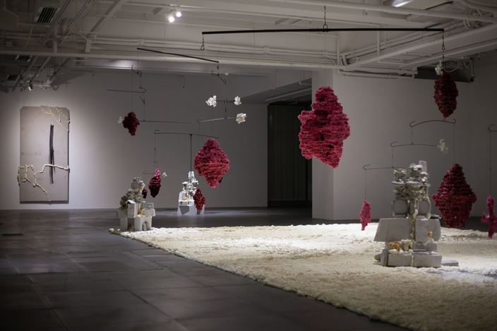 Installation view ofShifting Landscapes