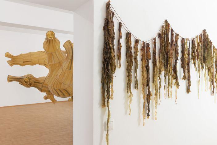 Exhibition view:Julia Lohmann, Kombu Ahtola,Boutwell Schabrowsky, Munich (10 September–23 October 2021). Courtesy Boutwell Schabrowsky.