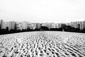 View of Gali Batu, overlooking Bukit Panjang by Robert Zhao Renhui contemporary artwork