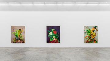 Contemporary art exhibition, Ewa Juszkiewicz, Bloom, and Ever Springing Shade at Almine Rech, Rue de Turenne, Paris, France