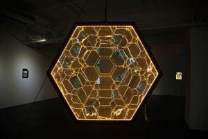 Honeycomb Accelerator by Andrew Luk & Samuel Adam Swope contemporary artwork